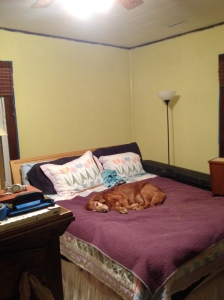 It's a preview; still needs trim work done on the upper moulding.  That's my constant companion there on the bed.