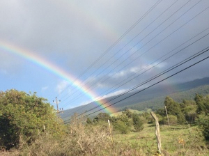 Cliche double rainbow on Maui!