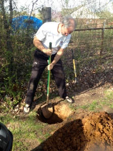 Fortunately, my hired hand is very into me, and showed up to finish the digging job.
