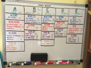 Color-coded, dry erase life.